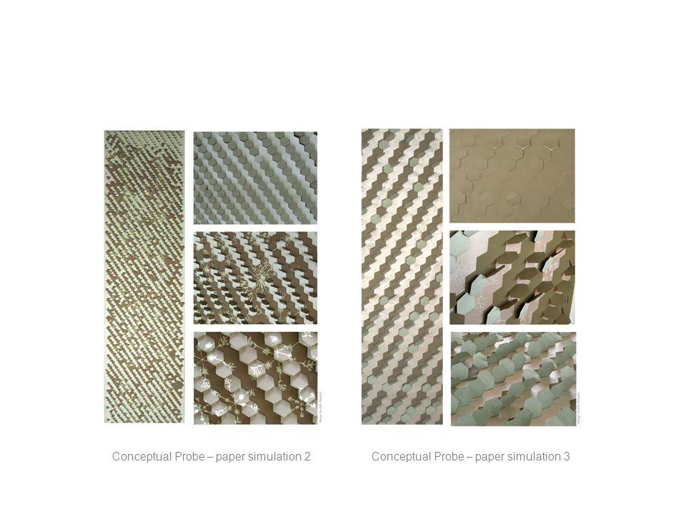 Conceptual Probe – paper simulation 2Conceptual Probe – paper simulation 3