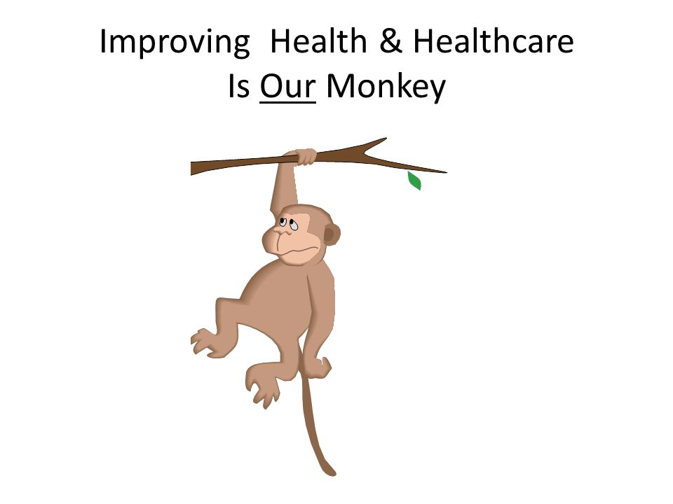 Improving Health & Healthcare Is Our Monkey