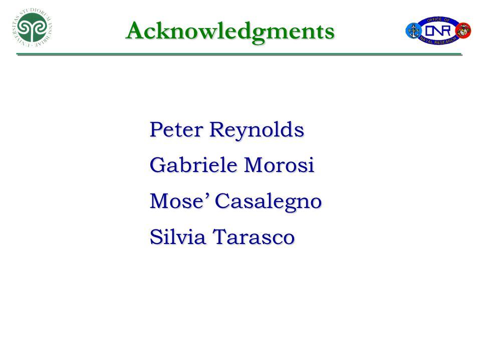 Acknowledgments Peter Reynolds Gabriele Morosi Mose' Casalegno Silvia Tarasco