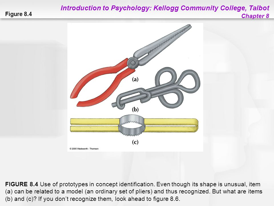 Introduction to Psychology: Kellogg Community College, Talbot Chapter 8 Figure 8.4 FIGURE 8.4 Use of prototypes in concept identification. Even though