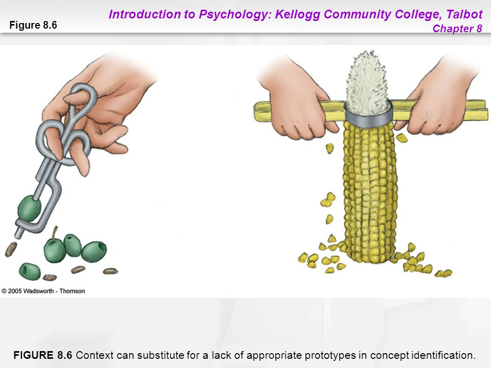 Introduction to Psychology: Kellogg Community College, Talbot Chapter 8 Figure 8.6 FIGURE 8.6 Context can substitute for a lack of appropriate prototy