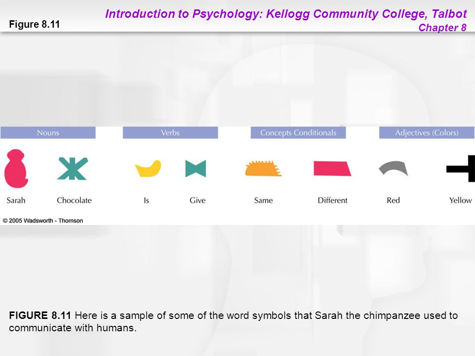 Introduction to Psychology: Kellogg Community College, Talbot Chapter 8 Figure 8.11 FIGURE 8.11 Here is a sample of some of the word symbols that Sara