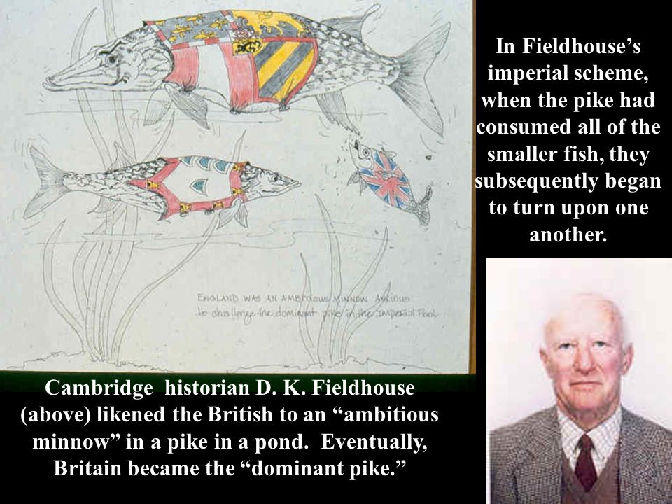 """Cambridge historian D. K. Fieldhouse (above) likened the British to an """"ambitious minnow"""" in a pike in a pond. Eventually, Britain became the """"dominan"""