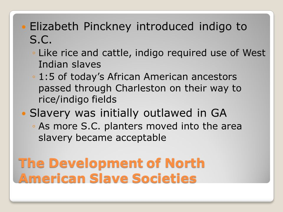 The Development of North American Slave Societies Elizabeth Pinckney introduced indigo to S.C. ◦Like rice and cattle, indigo required use of West Indi