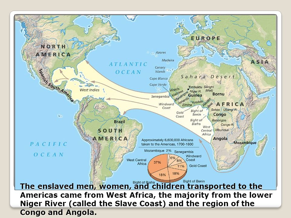 The enslaved men, women, and children transported to the Americas came from West Africa, the majority from the lower Niger River (called the Slave Coa