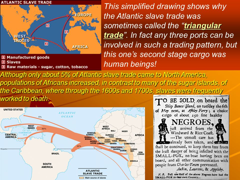 triangular trade This simplified drawing shows why the Atlantic slave trade was sometimes called the triangular trade .