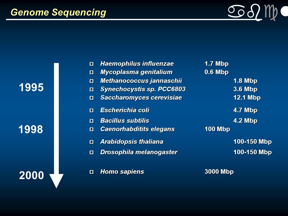 abclt Genome Sequencing p Haemophilus influenzae1.7 Mbp p Mycoplasma genitalium0.6 Mbp p Methanococcus jannaschii1.8 Mbp p Synechocystis sp.