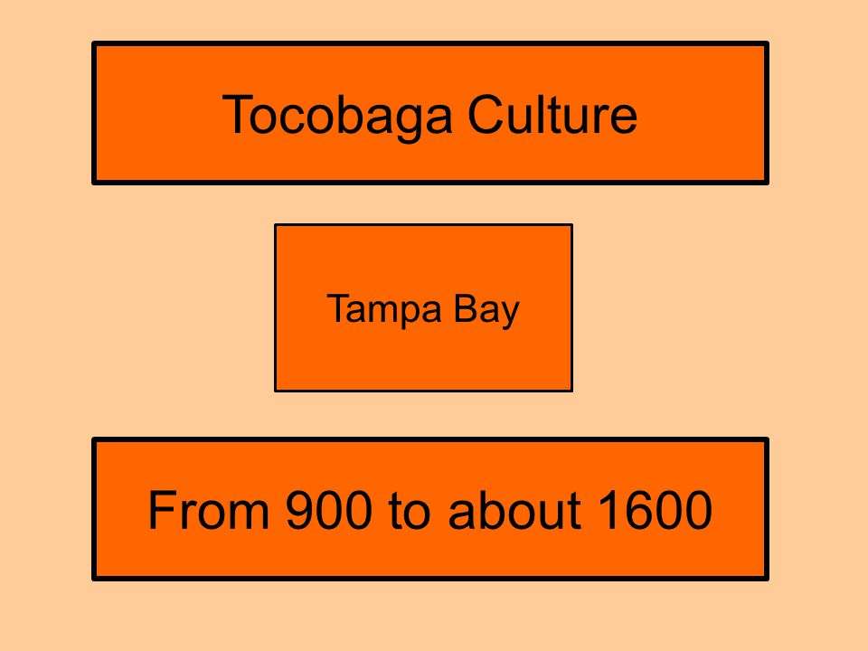 From 900 to about 1600 Tampa Bay Tocobaga Culture