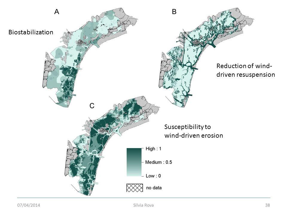 Silvia Rova38 Biostabilization Reduction of wind- driven resuspension Susceptibility to wind-driven erosion 07/04/2014