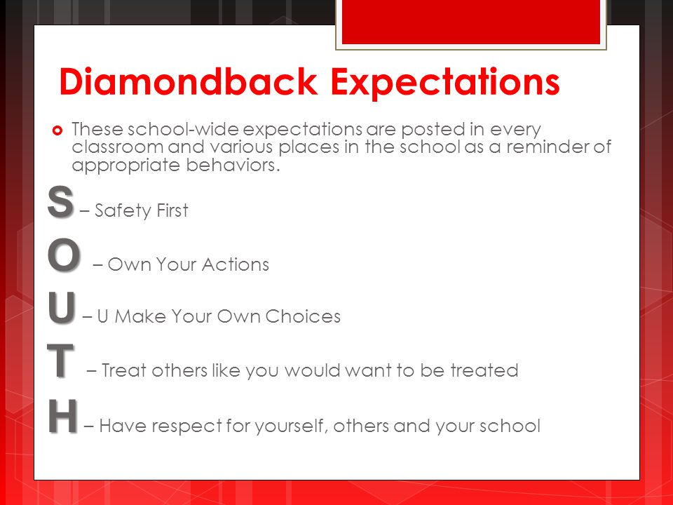Diamondback Expectations  These school-wide expectations are posted in every classroom and various places in the school as a reminder of appropriate behaviors.