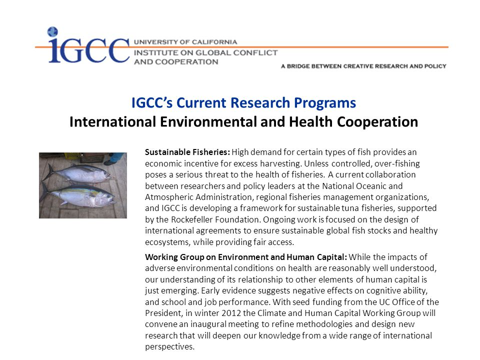 IGCC has been open to a wide range of methodological and conceptual approaches in every discipline.