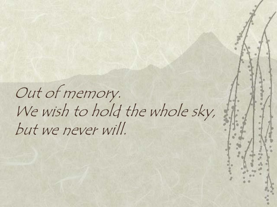 Out of memory. We wish to hold the whole sky, but we never will.