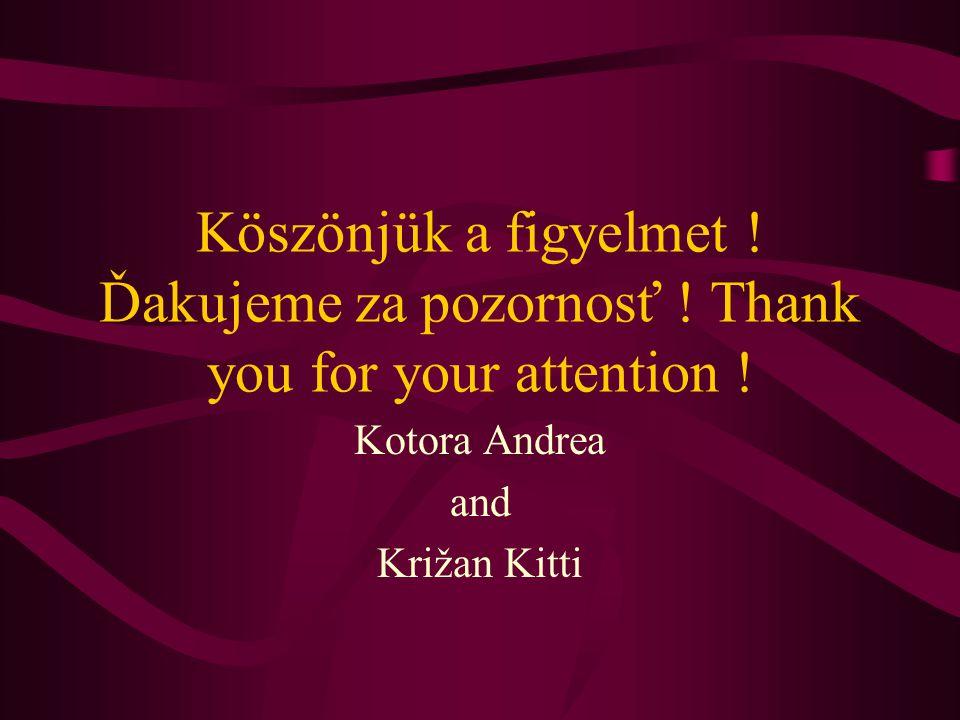 Köszönjük a figyelmet . Ďakujeme za pozornosť . Thank you for your attention .