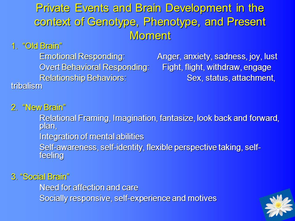 "Private Events and Brain Development in the context of Genotype, Phenotype, and Present Moment 1. ""Old Brain"" Emotional Responding: Anger, anxiety, sa"