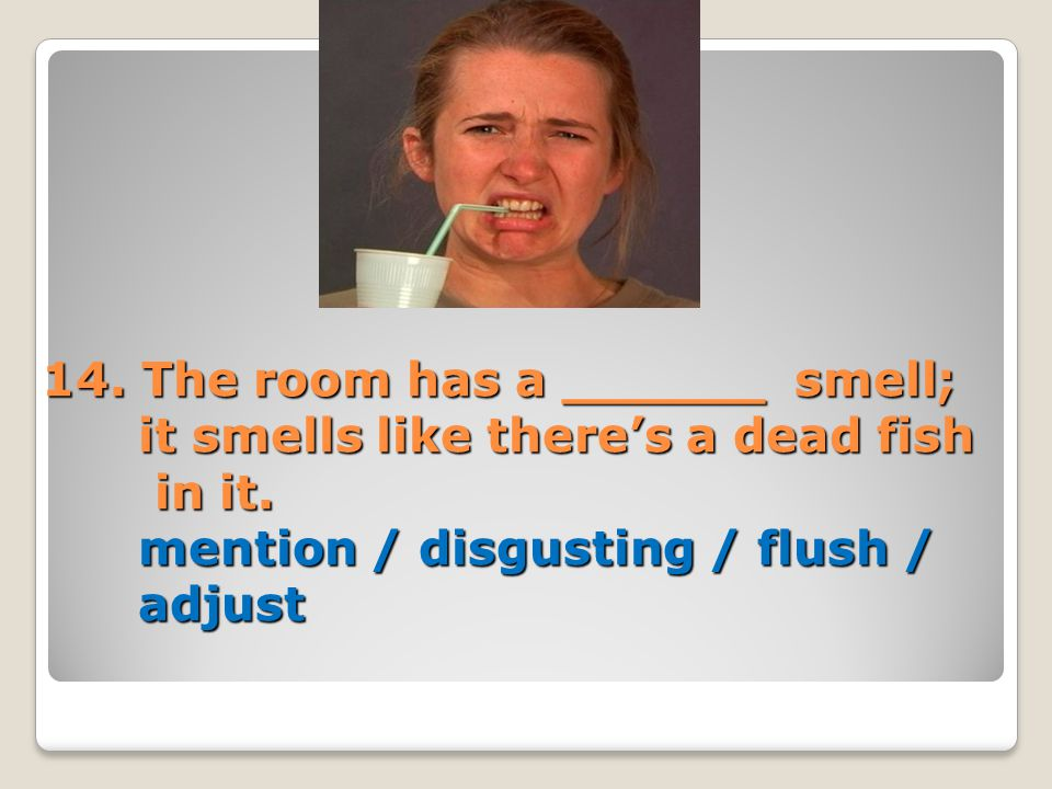 14. The room has a ______ smell; it smells like there's a dead fish in it. mention / disgusting / flush / adjust