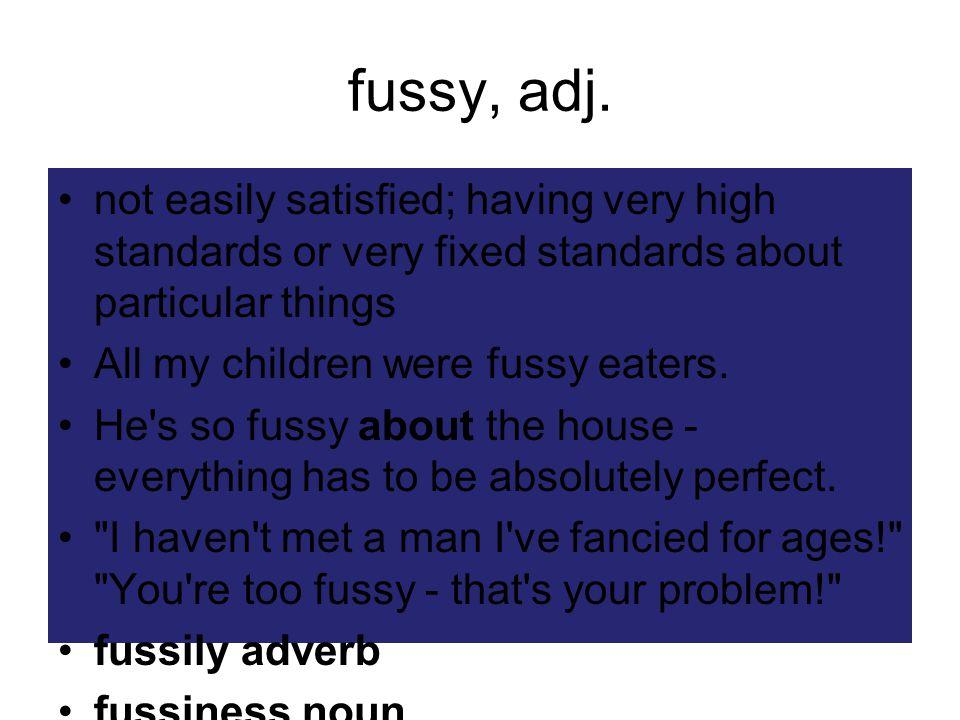 fussy, adj.