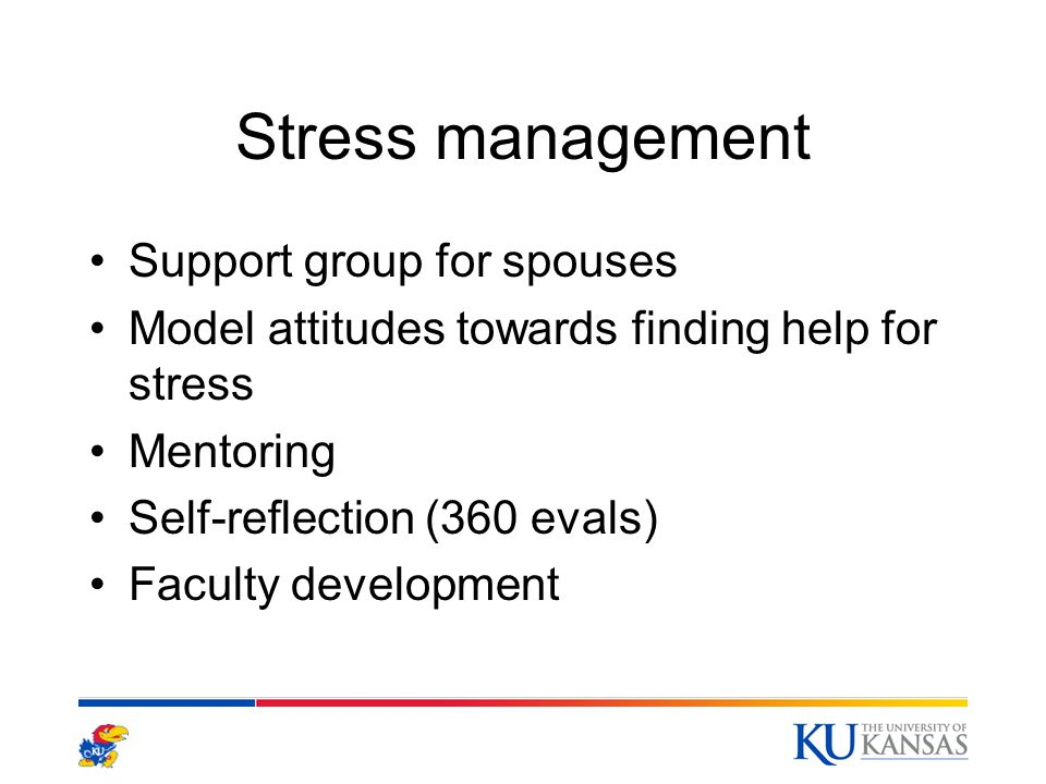 Stress management Support group for spouses Model attitudes towards finding help for stress Mentoring Self-reflection (360 evals) Faculty development