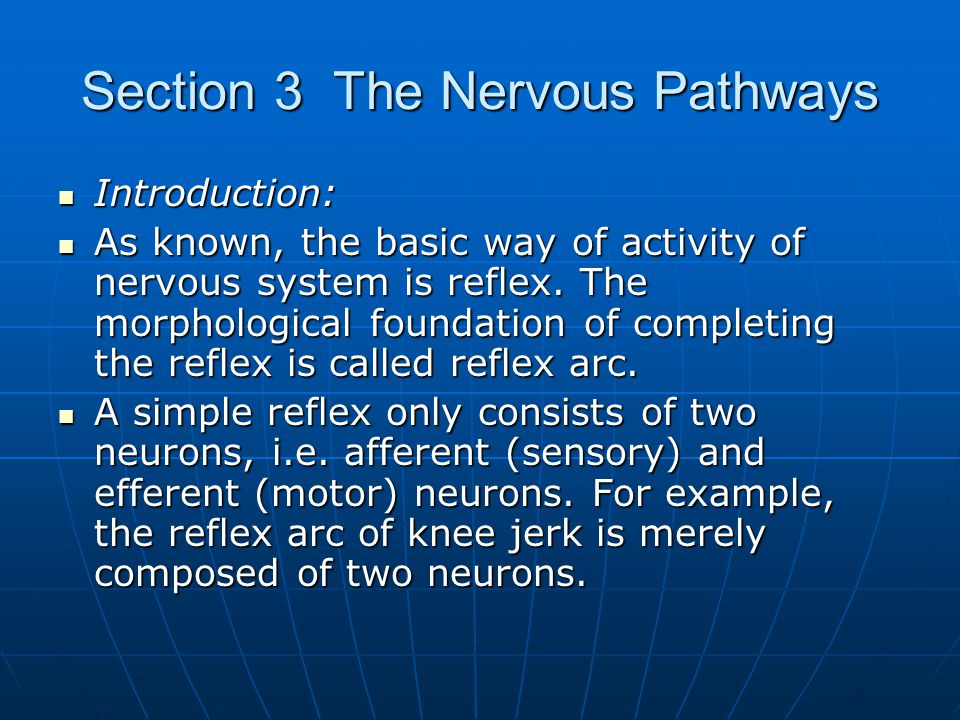 Section 3 The Nervous Pathways Introduction: Introduction: As known, the basic way of activity of nervous system is reflex. The morphological foundati