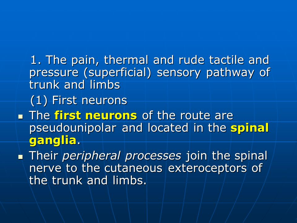 1. The pain, thermal and rude tactile and pressure (superficial) sensory pathway of trunk and limbs 1. The pain, thermal and rude tactile and pressure