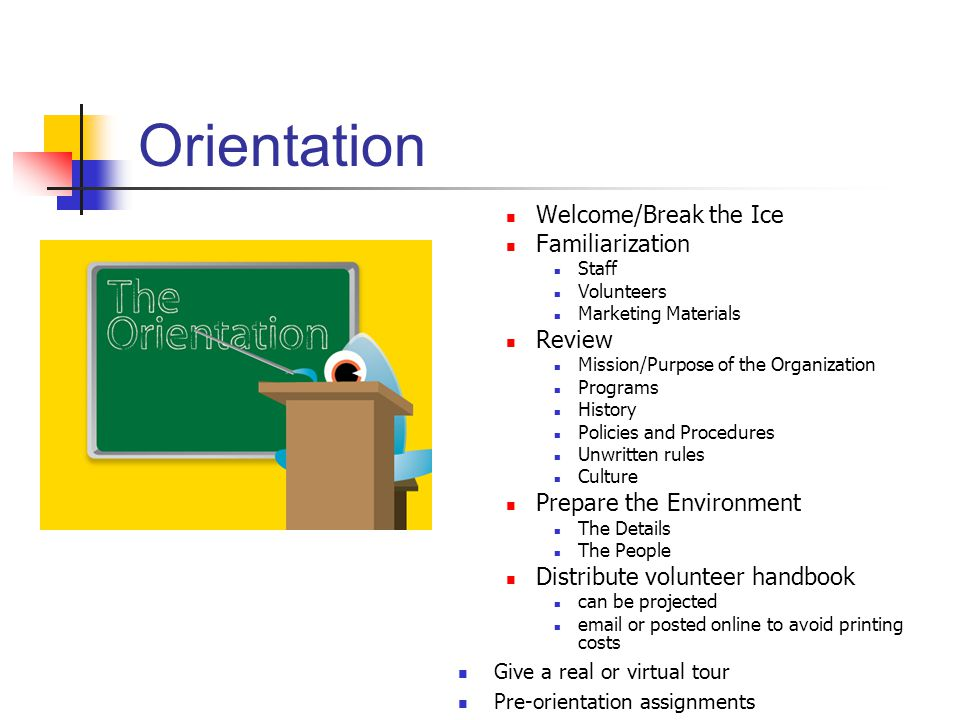 Orientation Welcome/Break the Ice Familiarization Staff Volunteers Marketing Materials Review Mission/Purpose of the Organization Programs History Pol