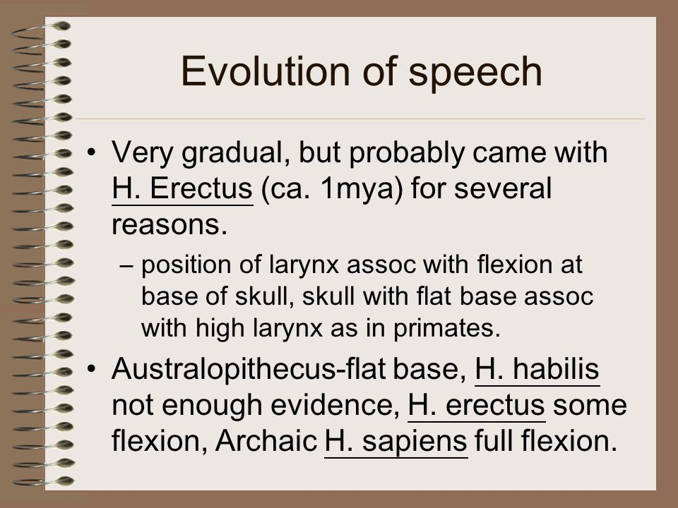 Evolution of speech Very gradual, but probably came with H.