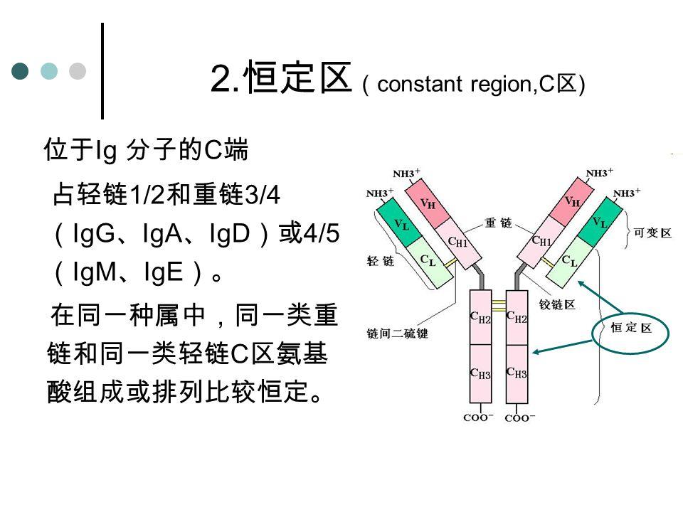 位于 Ig 分子的 C 端 占轻链 1/2 和重链 3/4 ( IgG 、 IgA 、 IgD )或 4/5 ( IgM 、 IgE )。 在同一种属中,同一类重 链和同一类轻链 C 区氨基 酸组成或排列比较恒定。 2. 恒定区 ( constant region,C 区 )