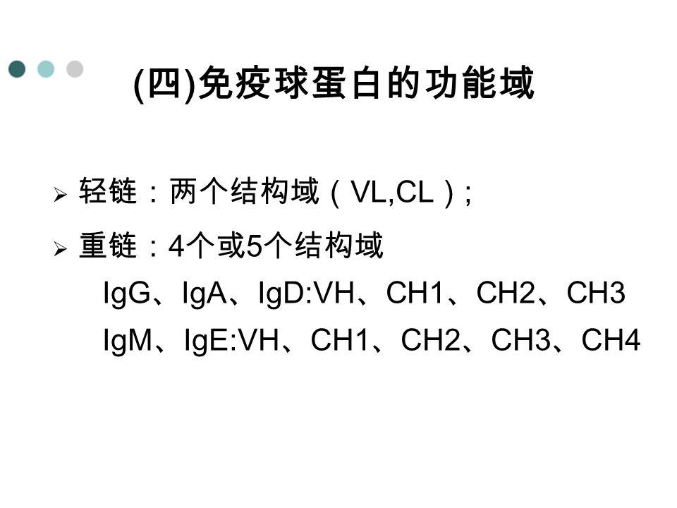 ( 四 ) 免疫球蛋白的功能域  轻链:两个结构域( VL,CL ) ;  重链: 4 个或 5 个结构域 IgG 、 IgA 、 IgD:VH 、 CH1 、 CH2 、 CH3 IgM 、 IgE:VH 、 CH1 、 CH2 、 CH3 、 CH4