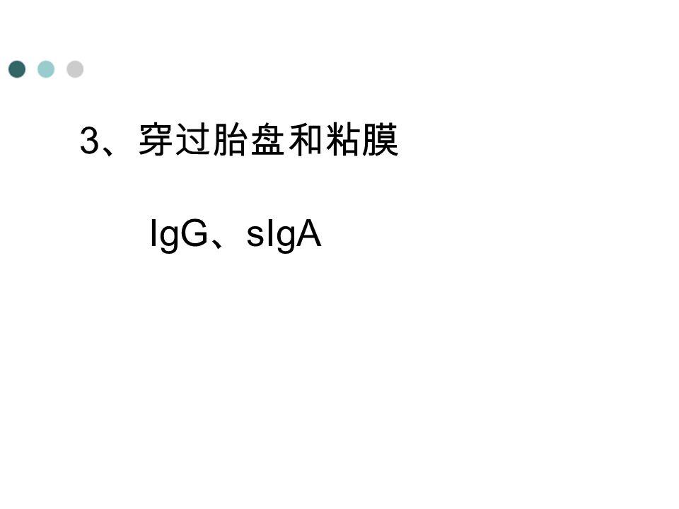 3 、穿过胎盘和粘膜 IgG 、 sIgA
