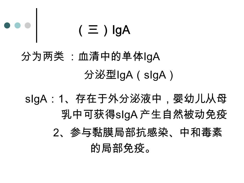 (三) IgA 分为两类 :血清中的单体 IgA 分泌型 IgA ( sIgA ) sIgA : 1 、存在于外分泌液中,婴幼儿从母 乳中可获得 sIgA 产生自然被动免疫 2 、参与黏膜局部抗感染、中和毒素 的局部免疫。
