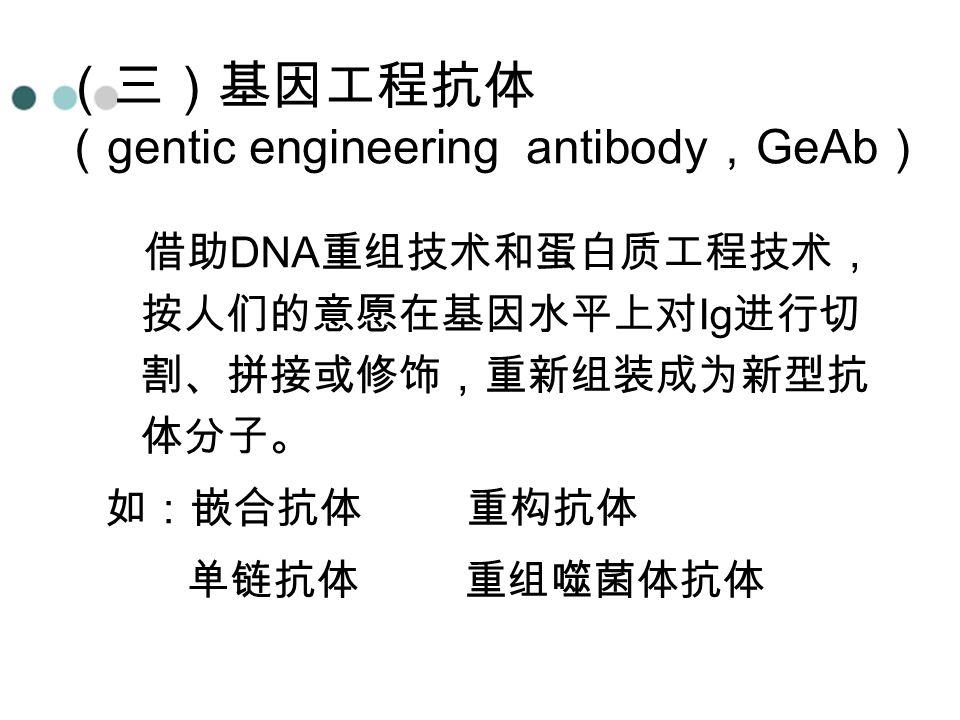 (三)基因工程抗体 ( gentic engineering antibody , GeAb ) 借助 DNA 重组技术和蛋白质工程技术, 按人们的意愿在基因水平上对 Ig 进行切 割、拼接或修饰,重新组装成为新型抗 体分子。 如:嵌合抗体 重构抗体 单链抗体 重组噬菌体抗体