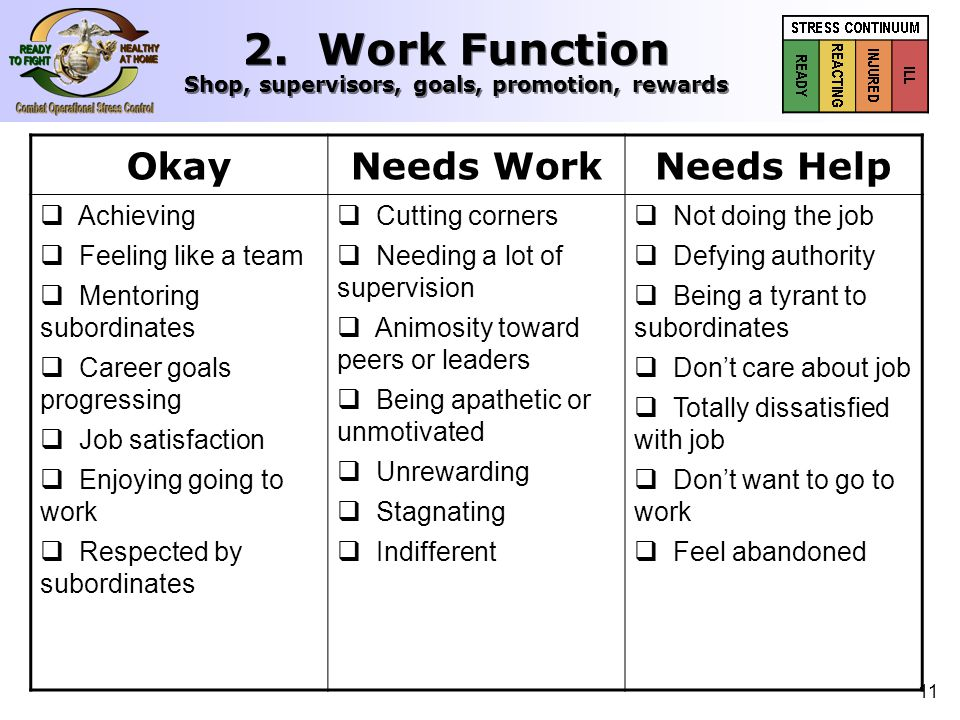 12 OkayNeeds WorkNeeds Help 3. Public Behavior Driving, waiting, dealing with public, patience