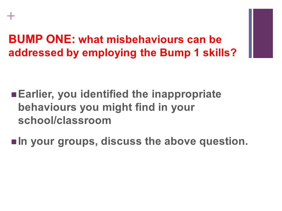 + BUMP ONE: what misbehaviours can be addressed by employing the Bump 1 skills.