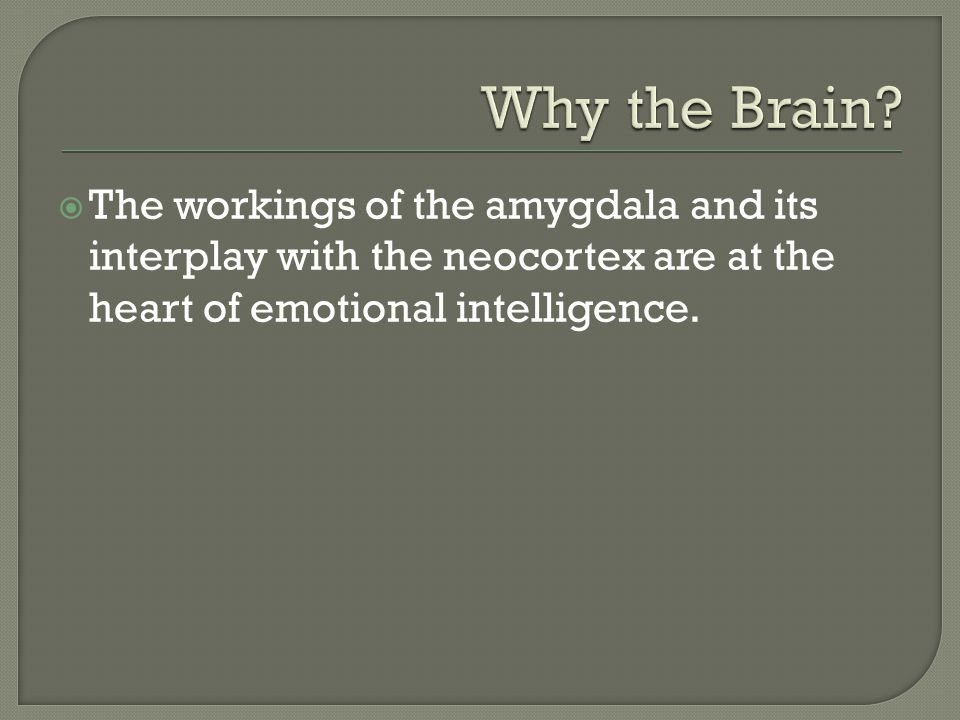  The workings of the amygdala and its interplay with the neocortex are at the heart of emotional intelligence.