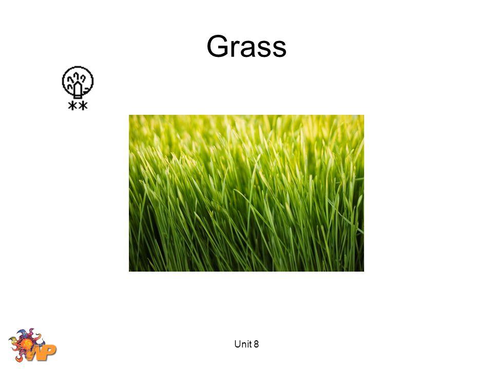 Unit 8 Grass