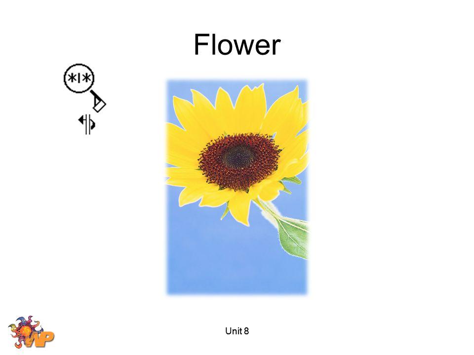 Flower Unit 8