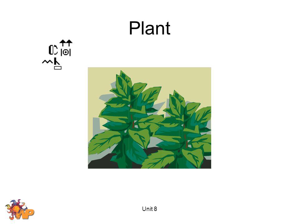 Unit 8 Plant