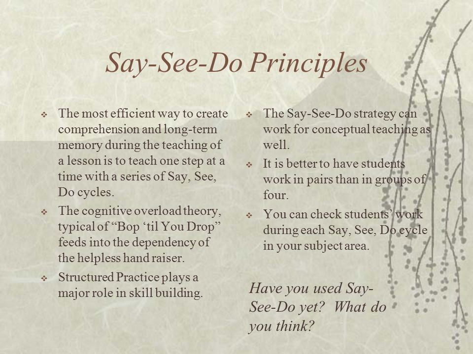 Say-See-Do Principles  The most efficient way to create comprehension and long-term memory during the teaching of a lesson is to teach one step at a time with a series of Say, See, Do cycles.