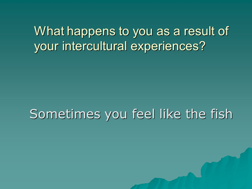 What happens to you as a result of your intercultural experiences Sometimes you feel like the fish