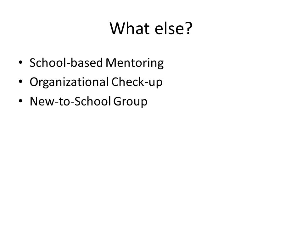 What else School-based Mentoring Organizational Check-up New-to-School Group