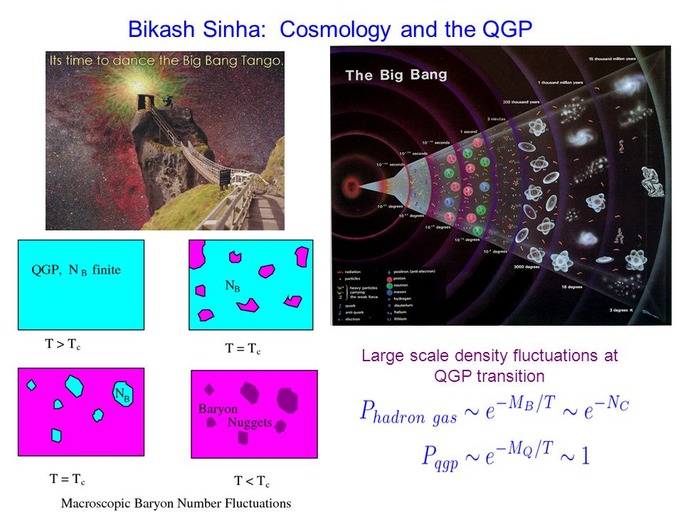 Bikash Sinha: Strangelets Stable strange quark matter Charge/Mass ~ 0 => No Coulomb Instability Hard to make since need multiple weak decays Big bang.