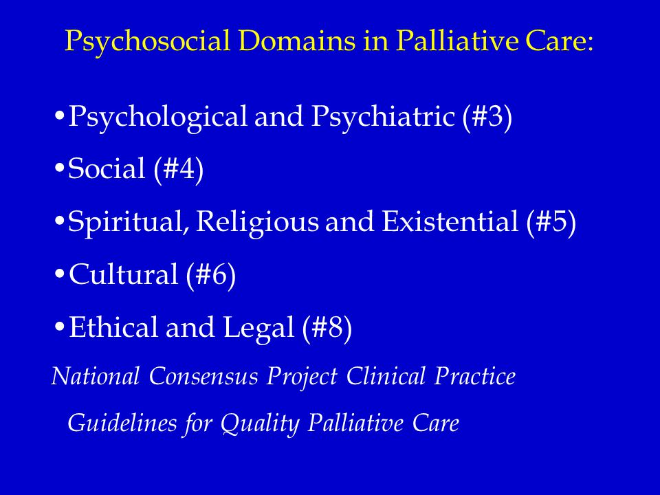 Psychosocial Domains in Palliative Care: Psychological and Psychiatric (#3) Social (#4) Spiritual, Religious and Existential (#5) Cultural (#6) Ethica