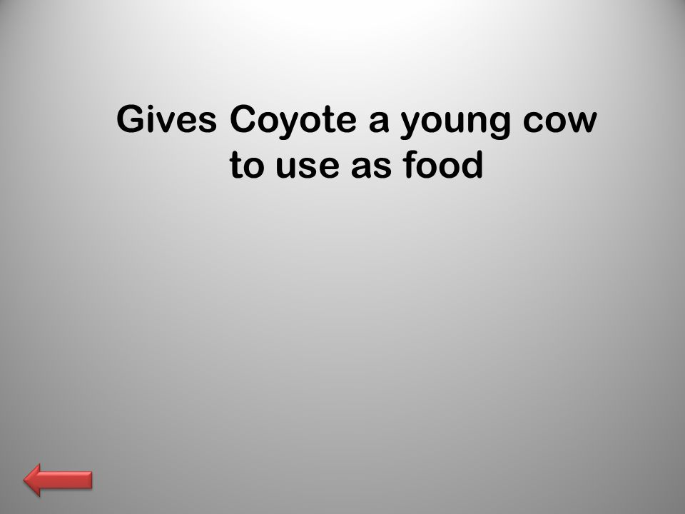 Gives Coyote a young cow to use as food