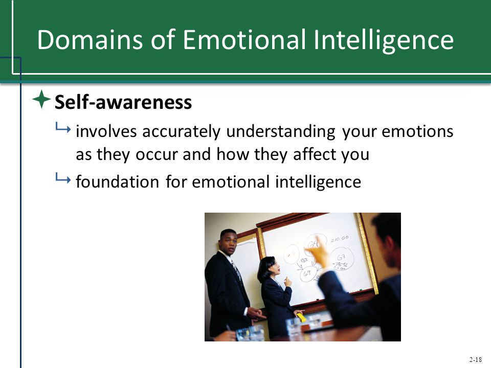 2-18 Domains of Emotional Intelligence  Self-awareness  involves accurately understanding your emotions as they occur and how they affect you  foun