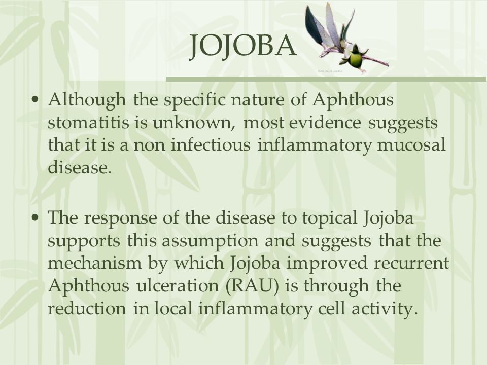 JOJOBA Although the specific nature of Aphthous stomatitis is unknown, most evidence suggests that it is a non infectious inflammatory mucosal disease.