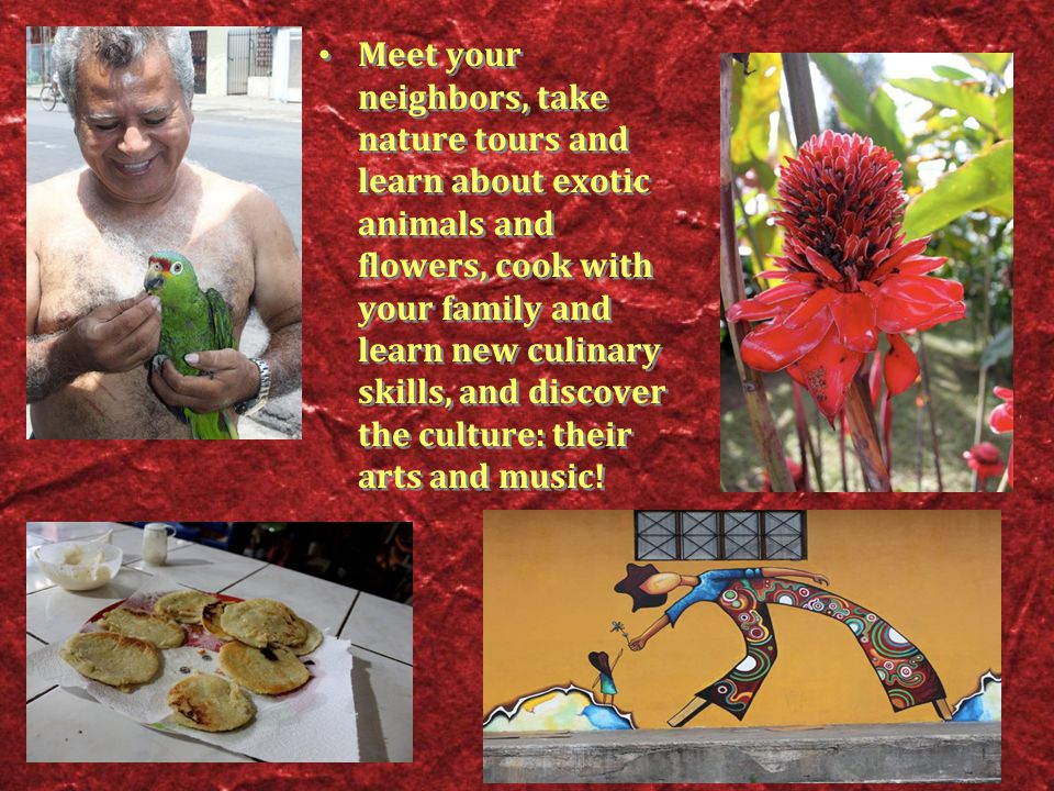 Meet your neighbors, take nature tours and learn about exotic animals and flowers, cook with your family and learn new culinary skills, and discover the culture: their arts and music!