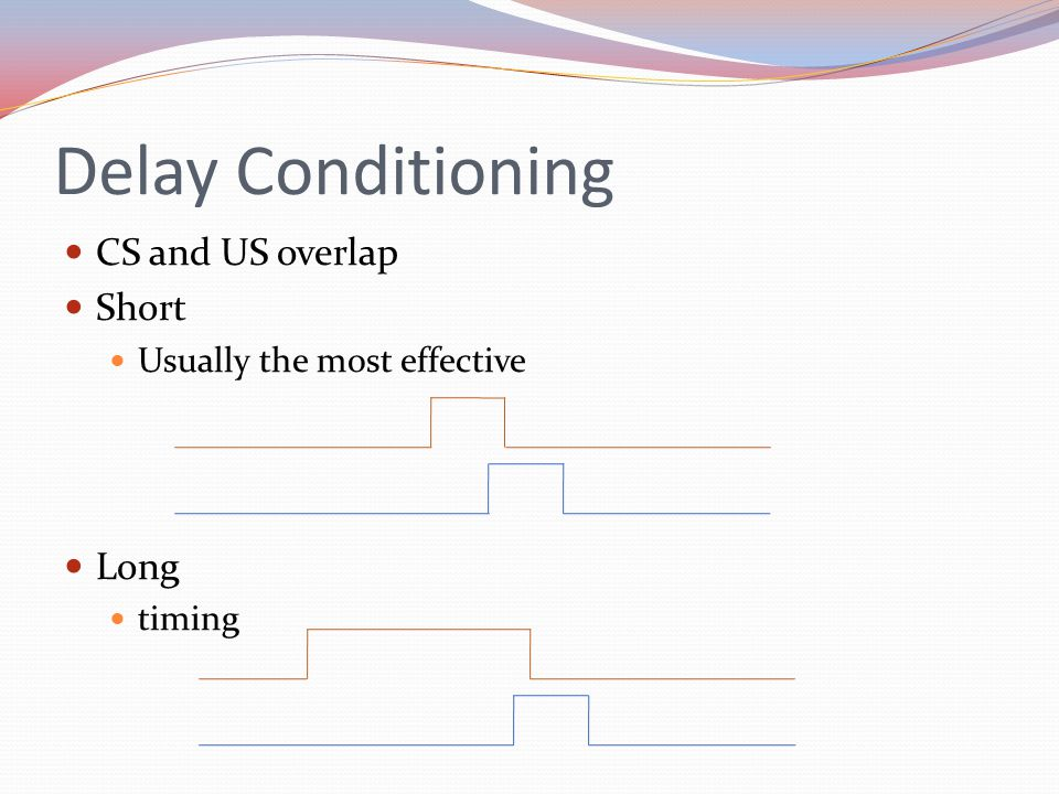 Delay Conditioning CS and US overlap Short Usually the most effective Long timing