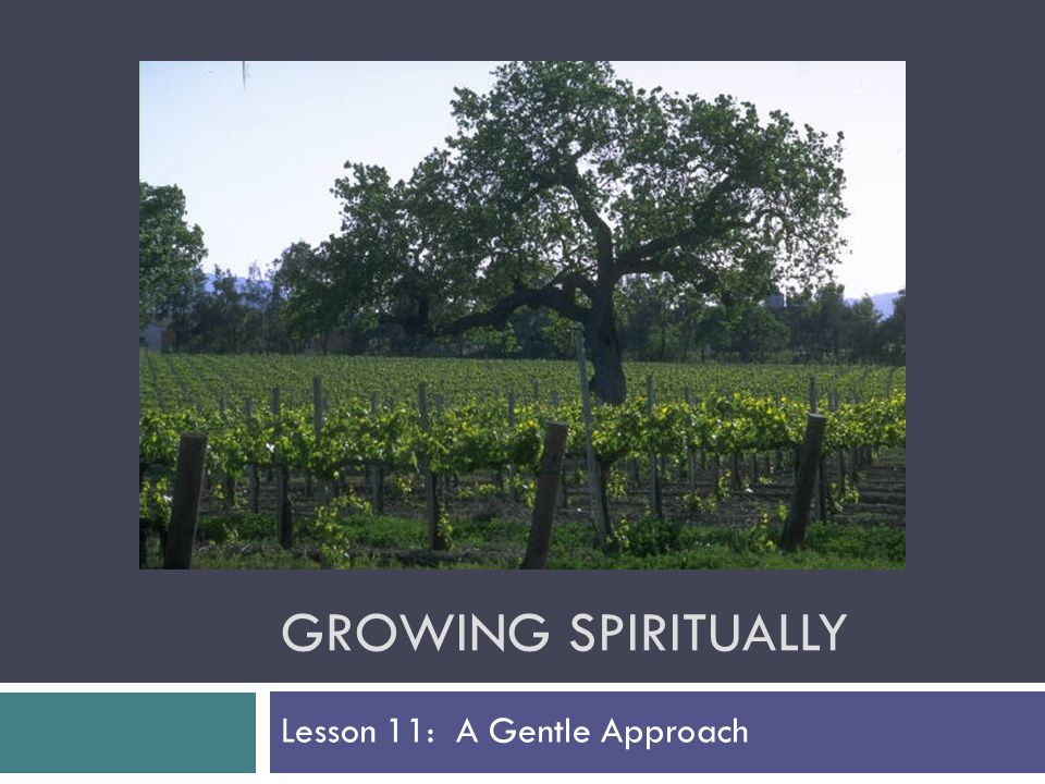 GROWING SPIRITUALLY Lesson 11: A Gentle Approach