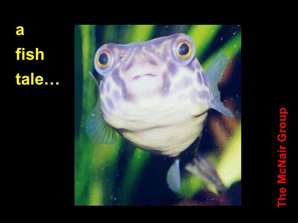 a fish tale…