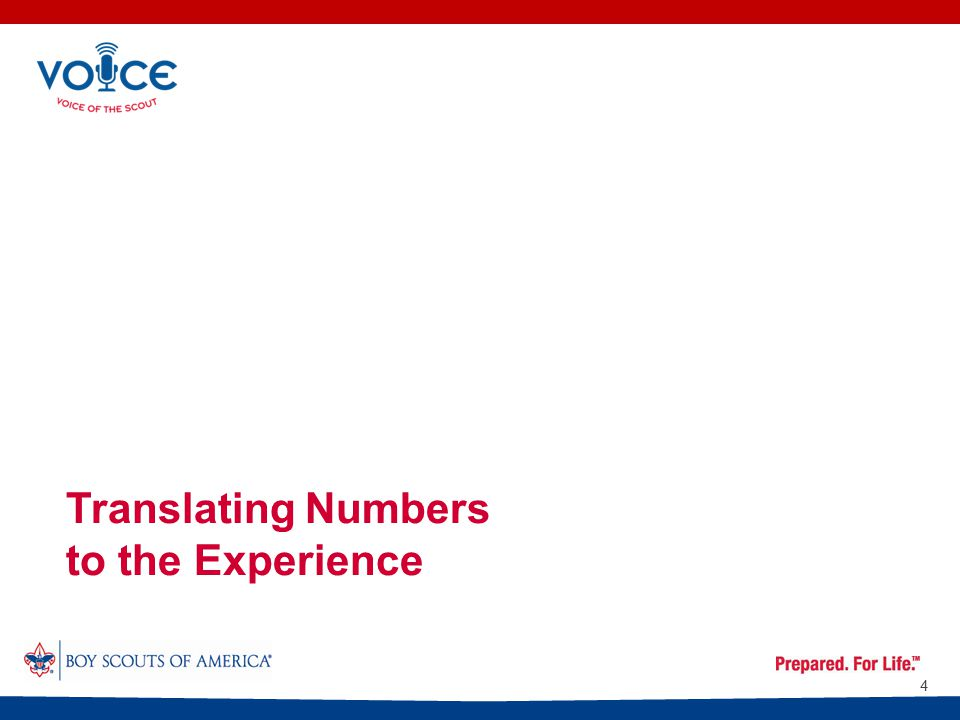 Translating Numbers to the Experience 4