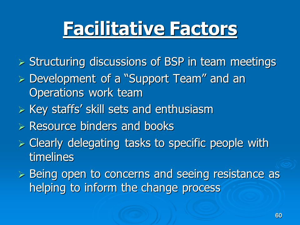 60 Facilitative Factors  Structuring discussions of BSP in team meetings  Development of a Support Team and an Operations work team  Key staffs' skill sets and enthusiasm  Resource binders and books  Clearly delegating tasks to specific people with timelines  Being open to concerns and seeing resistance as helping to inform the change process